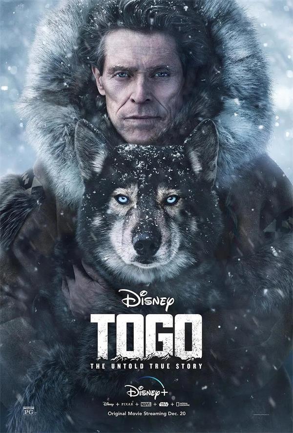 多哥 Togo 电影海报