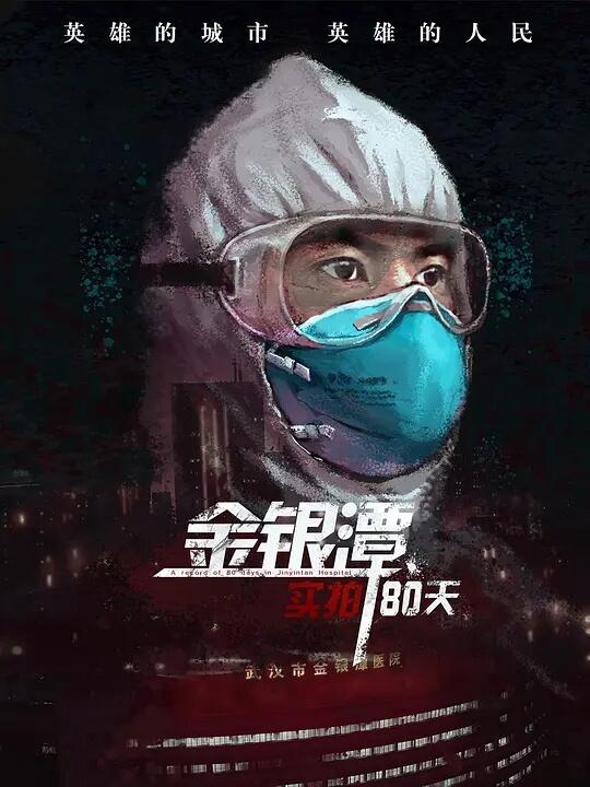 金银潭实拍80天 海报